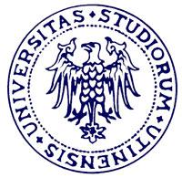 Logo Universidad Udine