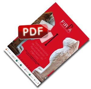 Programa Firpa 2009