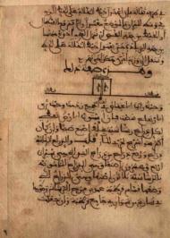 ms de Ibn Luyun