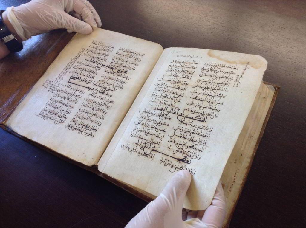 Piezas singulares en las bibliotecas del CSIC:  el Tratado de Agricultura de Ibn Luyun