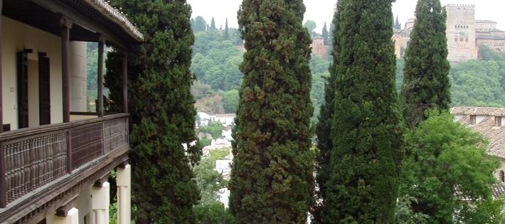 Galardones: «Granada, Ciudad de la Ciencia y la Innovación»