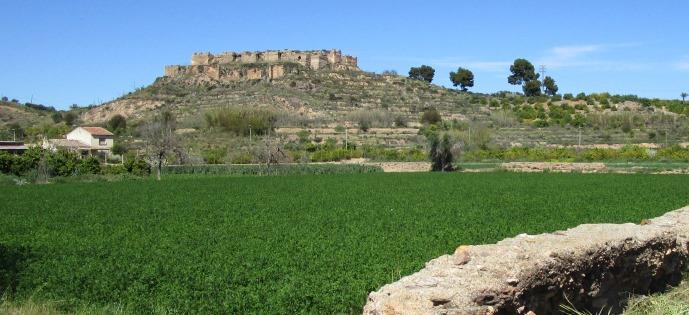 'Los tratados de agricultura como fuente para el estudio de la propiedad aristocrática andalusí', nuevo artículo de Pedro Jiménez (EEA, CSIC) e Inmaculada Camarero en la revista Al-Qantara